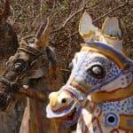 Up-close-clay-horse-of-Aiyanar-Temple-Chettinad-Tamil-Nadu-India